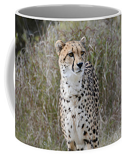 Coffee Mug featuring the photograph Spotted Beauty by Fraida Gutovich