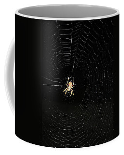 Coffee Mug featuring the photograph Spotted Orbweaver by Kristin Elmquist
