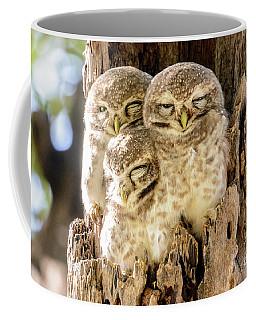 Spotted Owlets Coffee Mug