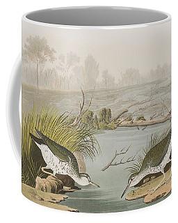 Spotted Sandpiper Coffee Mug