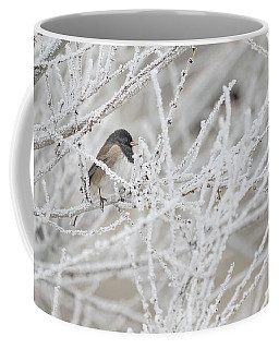 Spotted Towhee In Winter Coffee Mug