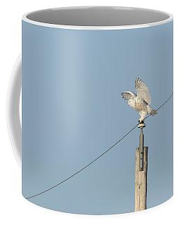 Spread Wing Snowy Owl 2015-1 Coffee Mug