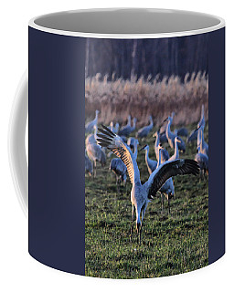 Coffee Mug featuring the photograph Spread Your Wings by Shari Jardina
