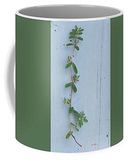 Sprig Of Spurge On Old Deck Floor Coffee Mug