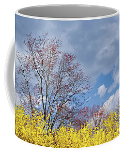 Coffee Mug featuring the photograph Spring 2017 by Bill Wakeley