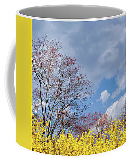 Coffee Mug featuring the photograph Spring 2017 Square by Bill Wakeley