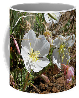 Coffee Mug featuring the photograph Spring At Last by Ron Cline