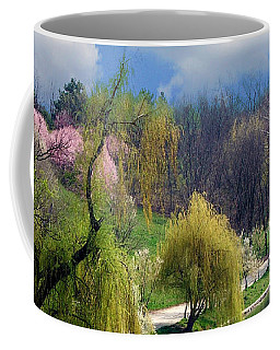 Spring At The Lake Coffee Mug by Judi Saunders