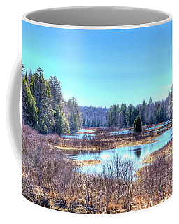 Coffee Mug featuring the photograph Spring Scene At The Tobie Trail Bridge by David Patterson