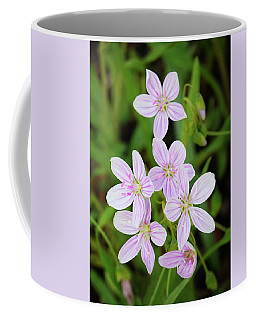 Spring Beauties Coffee Mug