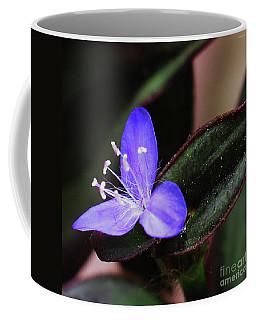 Spring Blossom 9 Coffee Mug