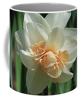Spring Blossom - Images From The Garden Coffee Mug by Brooks Garten Hauschild