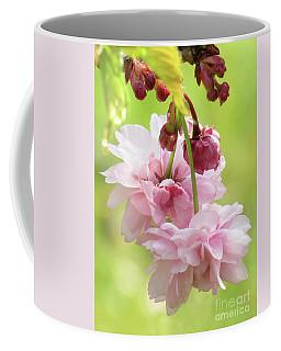 Spring Blossoms 8 Coffee Mug