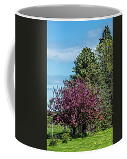 Coffee Mug featuring the photograph Spring Blossoms by Paul Freidlund