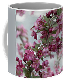 Coffee Mug featuring the photograph Spring Blossoms by PJ Boylan