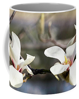 Coffee Mug featuring the photograph Spring by Cathy Donohoue