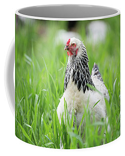 Spring Checken Coffee Mug