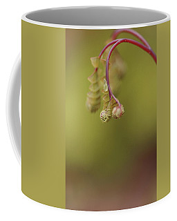 Coffee Mug featuring the photograph Spring Coming 2017 by Jeff Burgess