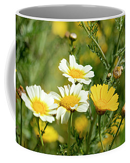 Coffee Mug featuring the photograph Spring Daisies by Michael Hope