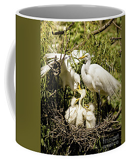 Coffee Mug featuring the photograph Spring Egret Chicks by Robert Frederick