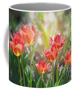 Spring Favorites Coffee Mug