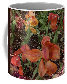 Coffee Mug featuring the photograph Spring Fever by Kathie Chicoine