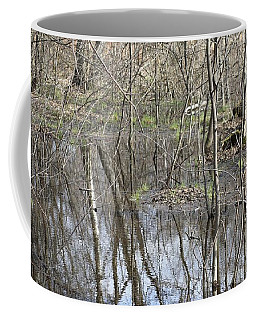 Spring Flood Coffee Mug by Anna Yurasovsky