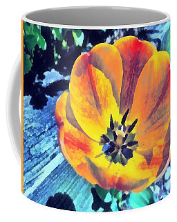 Coffee Mug featuring the photograph Spring Flower Bloom by Derek Gedney