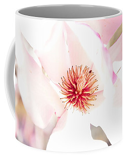 Spring Flower Blossoms Coffee Mug by Serena King