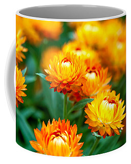 Spring Flowers In The Afternoon Coffee Mug