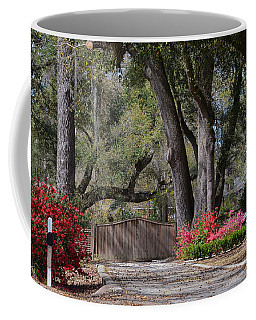 Spring Gate Coffee Mug