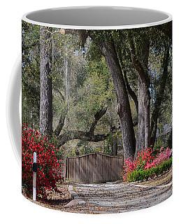 Spring Gate Coffee Mug