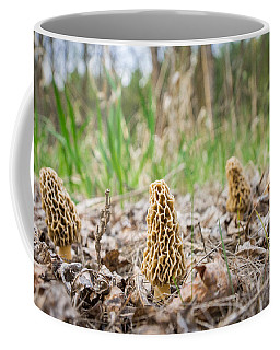 Spring Gathering Coffee Mug