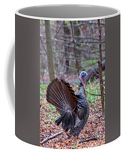 Coffee Mug featuring the photograph Spring Gobbler by Bill Wakeley