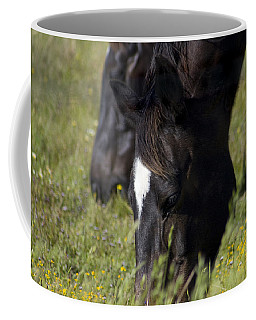 Horses Eating Spring Grass Coffee Mug