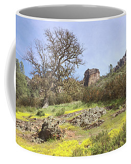Coffee Mug featuring the photograph Spring In Pinnacles National Park by Art Block Collections