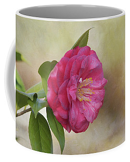 Coffee Mug featuring the photograph Spring In Savannah by Kim Hojnacki