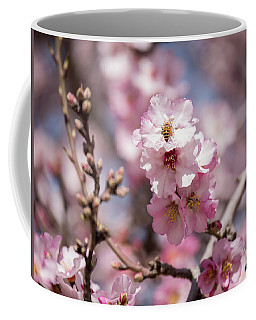 Spring Is Arrived Coffee Mug by Yoel Koskas