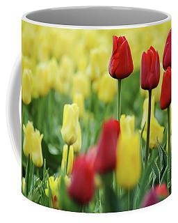 Coffee Mug featuring the photograph Spring Is Coming by Nick Boren