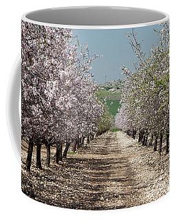 Spring Is Here, Panorama Coffee Mug by Yoel Koskas
