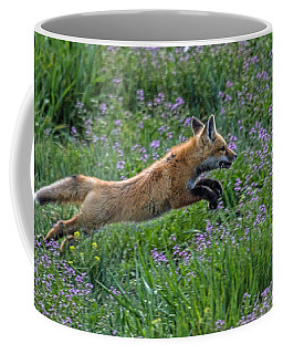 Spring Kit Coffee Mug
