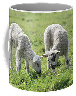 Coffee Mug featuring the photograph Spring Lambs by Scott Carruthers
