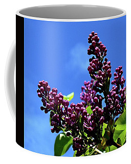 Spring Lilac Coffee Mug by Nick Kloepping