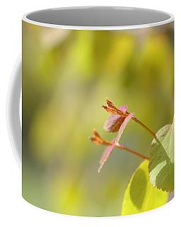 Coffee Mug featuring the photograph Spring Macro2 by Jeff Burgess
