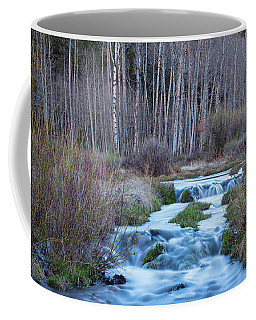 Spring Melt Off Flowing Down From Bonanza Coffee Mug by James BO Insogna