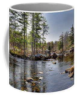 Coffee Mug featuring the photograph Spring Near Moose River Road by David Patterson