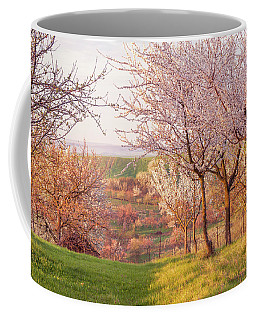 Coffee Mug featuring the photograph Spring Orchard With Morring Sun by Jenny Rainbow