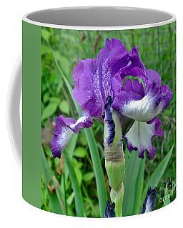 Coffee Mug featuring the photograph Spring Purple Iris by Marsha Heiken