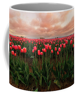 Coffee Mug featuring the photograph Spring Rainbow by Ryan Manuel