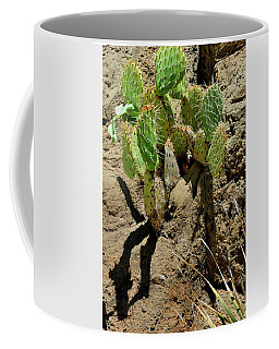 Spring Refreshment Coffee Mug